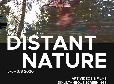 International Simultaneous Exhibitions: 'Distant Nature'