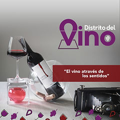 El_vino_através_de_los_sentidos.jpg
