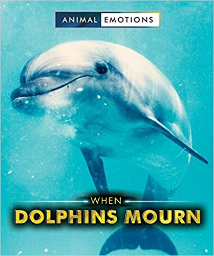 When Dolphins Mourn