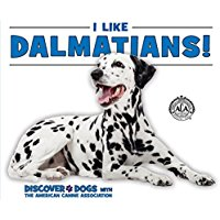 Dalmations_