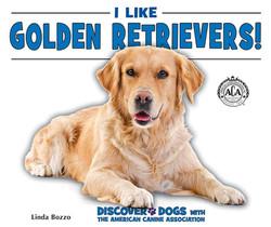 I Like Golden Retrievers!
