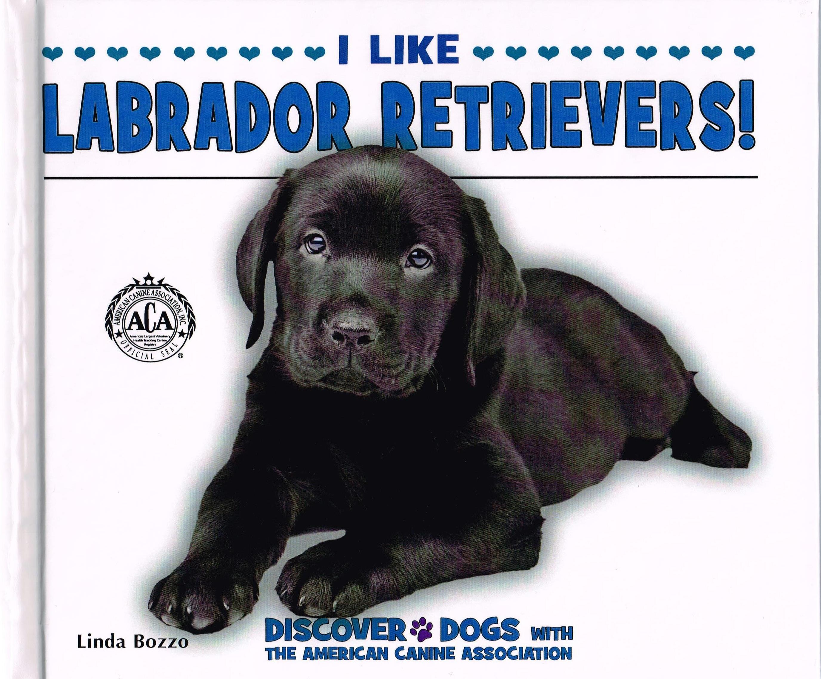 I Like Labrador Retrievers!
