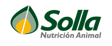 Logo Solla platinum-01.png