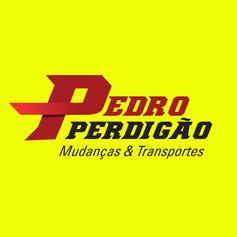 Pedro-Perdigão.jpg