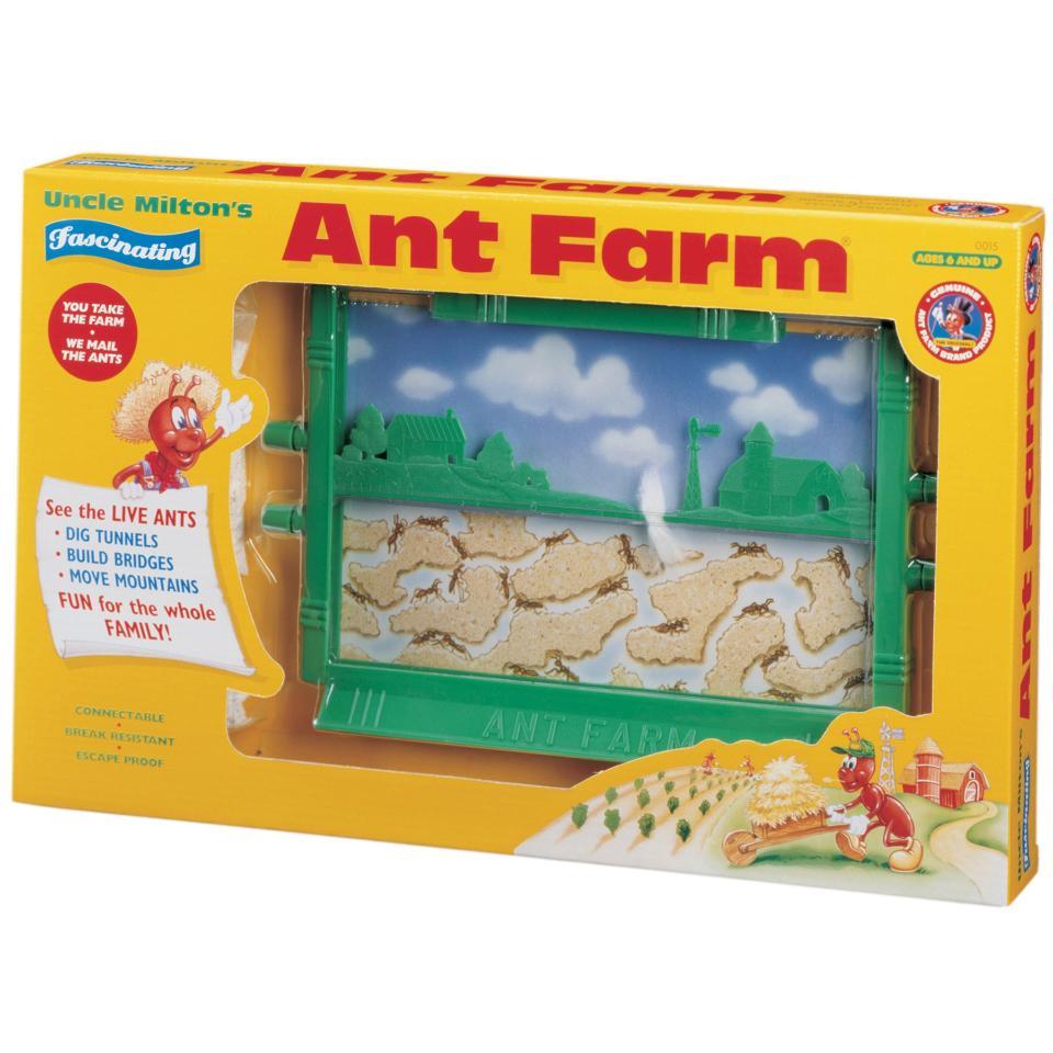 the-original-ant-farm--live-ant-habitat--86B6E838.zoom
