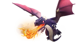 dragon-xx