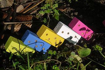 Bug Blocks In The Garden