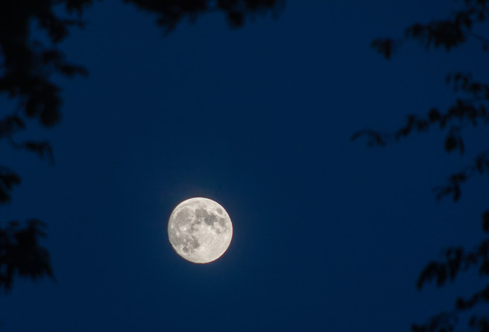 The Moon, October 6th, 2014.