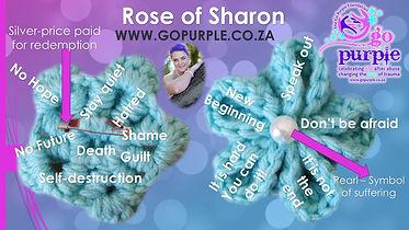 Rose of Sharon 1.jpg