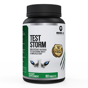 Test-Storm-01-1-600x600.png