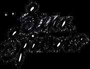 sina logo.png