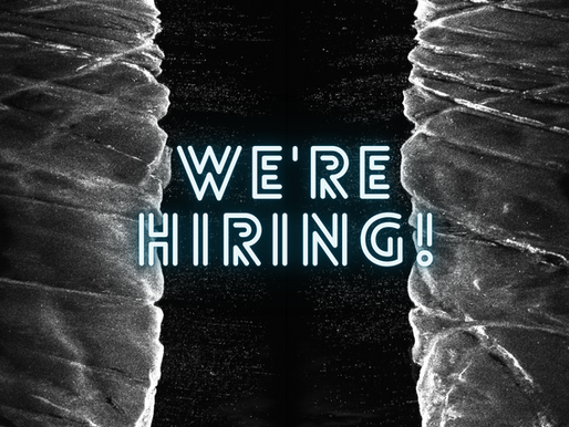 We're hiring! Help Subsea Europe Services to Simplify Marine Data Acquisition