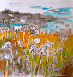 Monhegan watercolor sketch 1.JPG