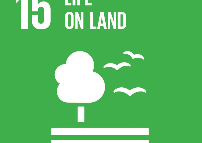 3/3 of our Global Goals!