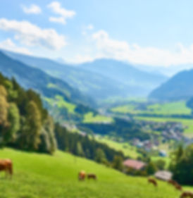 View over beautiful Valley _Zillertal_ i