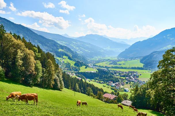 'Kickstart je gezondheid' van 26 t/m 30 oktober bij Herberg Zirbe in Tirol