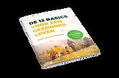 3d_book   12 BASICS print met bravo chec