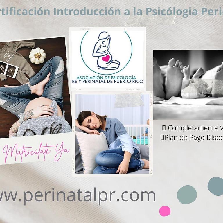 Certificación en introducción a la Psicología Perinatal