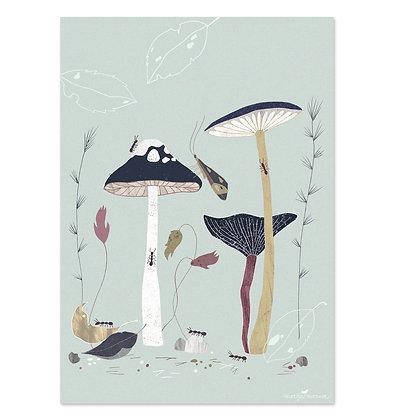Poster   Flora und Fauna