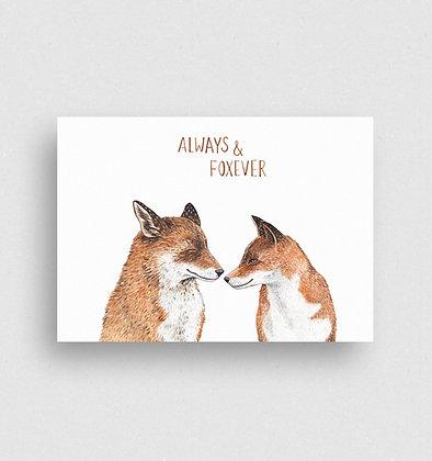 Postkarte   Fuchsliebe