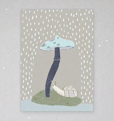 Postkarte   Schnirkelschnecke