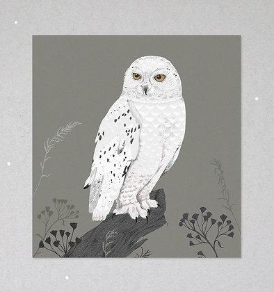Mini Print   Schnee-Eule