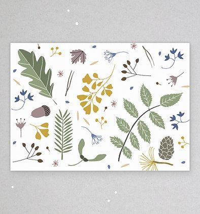 Postkarte   Waldboden