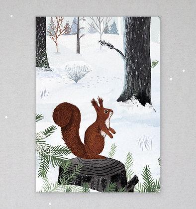 Postkarte | Eichhörnchen im Schnee
