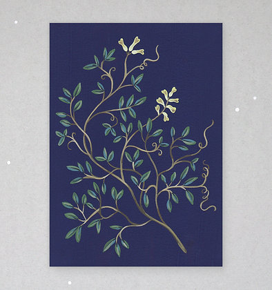 Postkarte   Zarte Flora - Corydalis