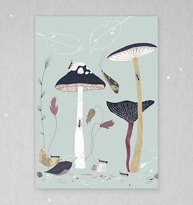 Postkarte | Flora & Fauna