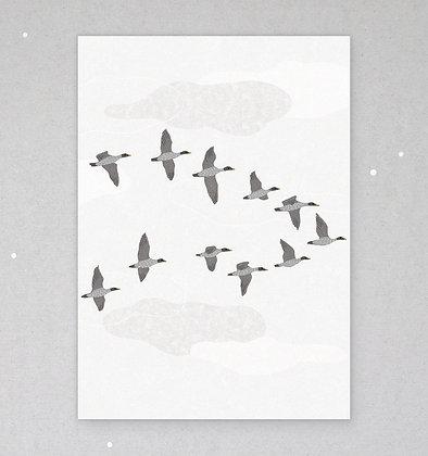 Postkarte | Gänseflug