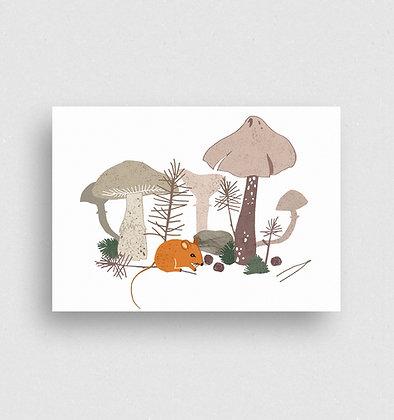 Postkarte   Waldmaus
