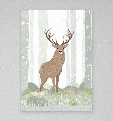 Postkarte | Hirsch