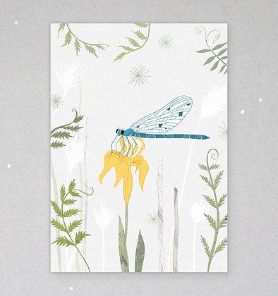 Postkarte | Libelle