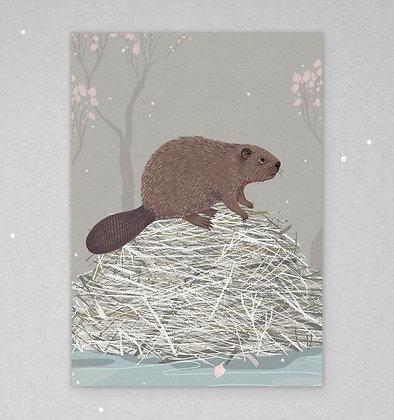 Postkarte | Biber