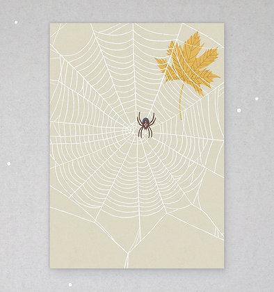 Postkarte   Spinnennetz