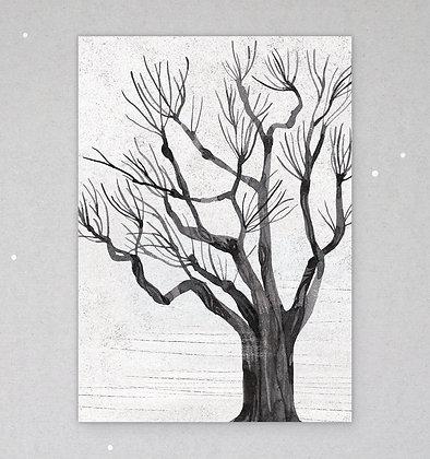 Postkarte | Schwarzpappel