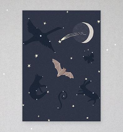 Postkarte | Fledermaus