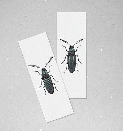 Lesezeichen Set | Käfer - Elateridae
