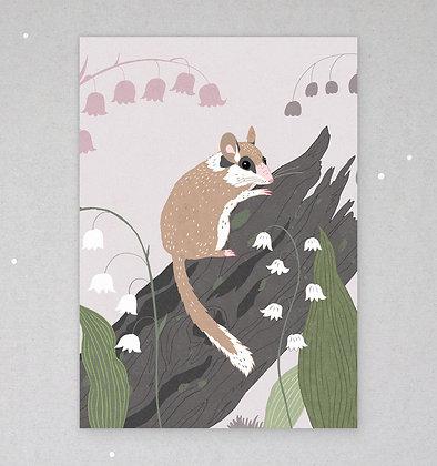 Postkarte | Gartenschläfer