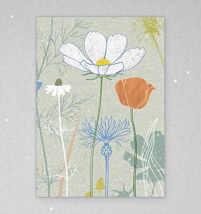 Postkarte | Wildblumen