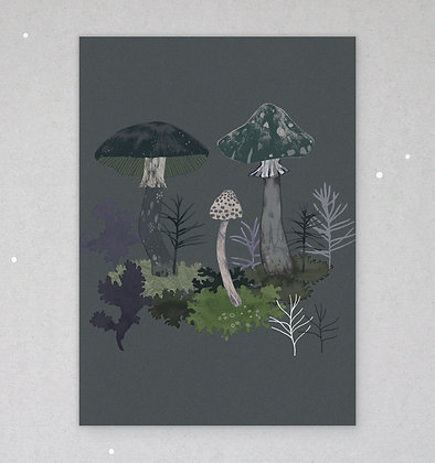 Postkarte | Pilznacht