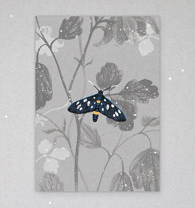 Postkarte | Widderchen - Amata phegea