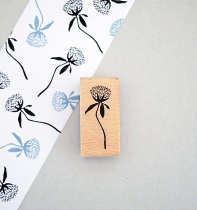 Stempel   Wiesenklee (Trifolium pratense)