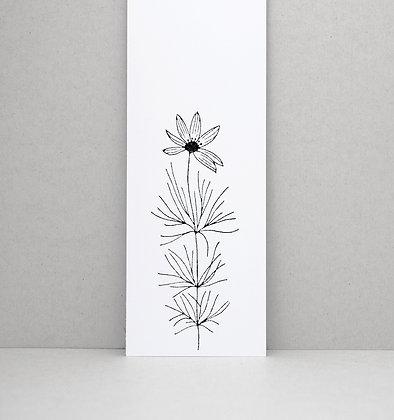 Stempel | Netzblattstern (Coreopsis verticillata)