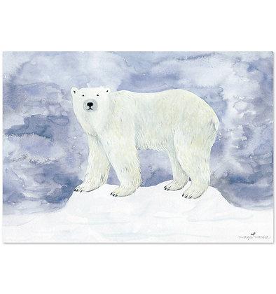Poster | Polarbär