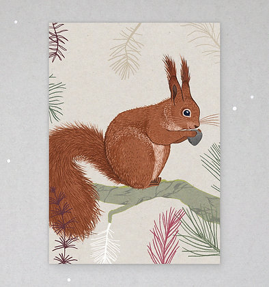 Postkarte | Eichhörnchen
