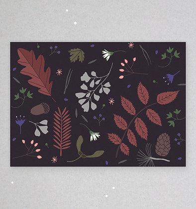 Postkarte | Waldboden