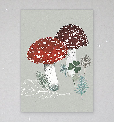 Postkarte   Fliegenpilze