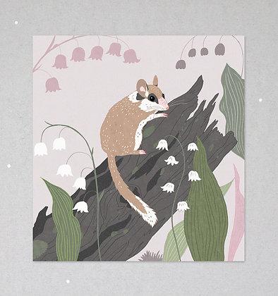 Mini Print | Gartenschläfer